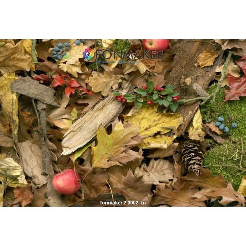 Фотофон осенний лес для фотосъемки в Инстаграм fonmaker 2 0002