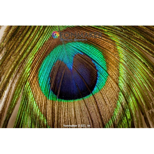 Фотофон павлиний глаз для фотосъемки в Инстаграм fonmaker 3 021