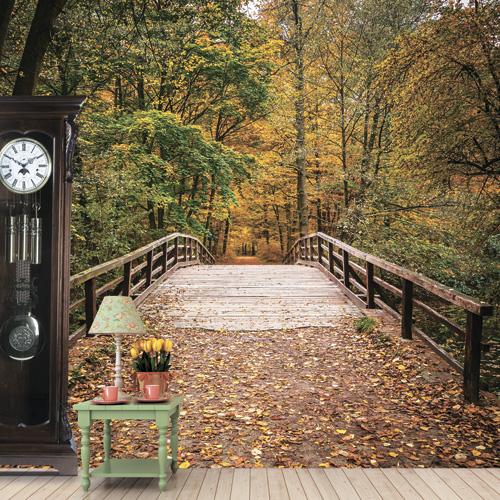 Фотообои Антимаркер мост в осенний парк 6-a-606