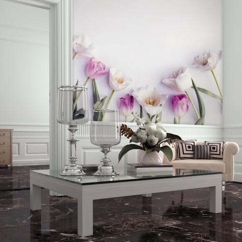 Обои Milan (Нежные тюльпаны), M 3109, 300x270 см